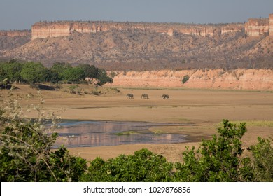 A horizontal, striking image of three distant elephants, Loxodonta africana, walking through a dry riverbed beneath the scenic Chilojo cliffs in Gonarezhou National Park, South Africa.