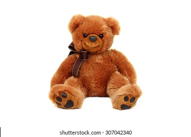 Horizontal studio shot of brown bear toy isolated on white background.