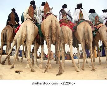 Horizontal of Tuareg nomads on camels watching a desert festival