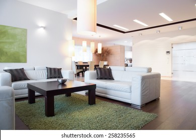 Horizontal view of bright space inside apartment