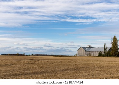 Horizontal vista with sweeping clouds, vibrant farmland and part of a barn to the right. Autumn colors, shot in the afternoon.