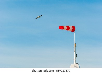 Horizontally flying windsock wind vane with blue sky in the background. Big birds seagulls flying around.