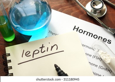 Hormone leptin written on notebook. Test tubes and hormones list.
