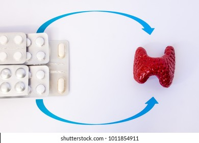 Hormone replacement therapy of thyroid or hypothyroidism concept photo. Model of thyroid gland is close to drugs in blisters on which arrows are drawn to organ, symbolizing hormone replacement