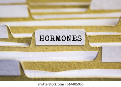 HORMONES word on card index paper