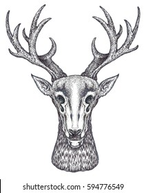 horned deer painted in the technique of engraving.