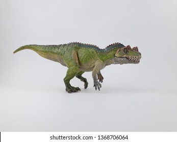 Ceratosaurusmeaning horned lizard was a medium sized carnivore theropod in the Late Jurassic period. Ceratosaurushad a large skull with large teeth, as well as short but powerful front limbs.