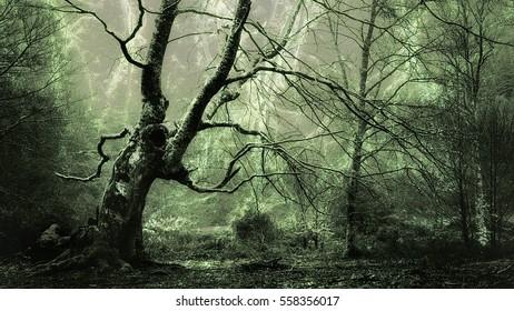 horor forest