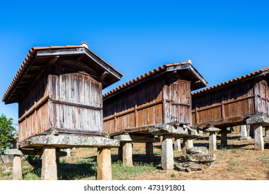 Horreos (granaries) of A Merca, the highest concentration of horreos in Galicia (Spain)