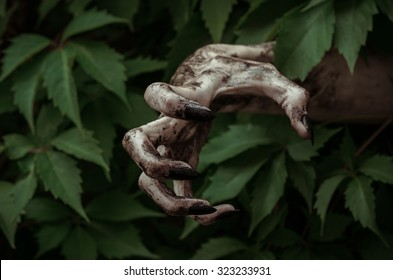 Horror and Halloween theme: terrible dirty hand with black fingernails zombie crawls out of green leaves, walking dead apocalypse