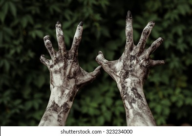 Horror and Halloween theme: Terrible zombie hands dirty with black nails reach to the green leaves, the walking dead apocalypse, first-person view