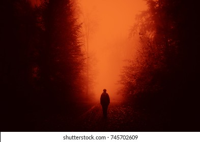horror landscape, man walking in dark forest