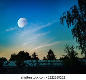 A horror scene of damaged, old, scary and abandoned greenhouse in night of full moon. Darkness and shadows are causing goosebumps and fear. Wind and storm has torn the plastic sheeting and glass.