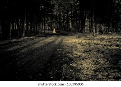 Horror scene. Female ghost in a forest