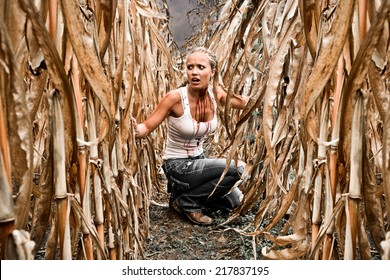 Horror Scene of a Pretty Blonde Woman Hiding in a Corn Field