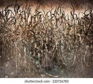 Horror Scene with scary ghost like little girl in a corn field