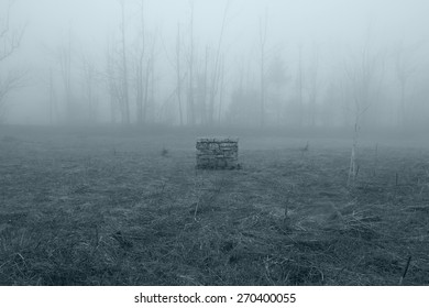 Horror Scene of the stone well. The Ring Movie Scene