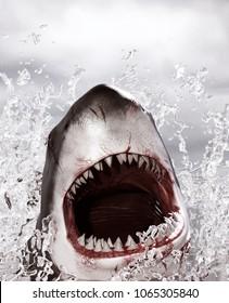 Horror shark attack,3d illustration