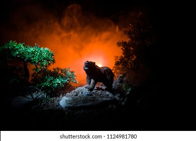 Horror view of big bear in forest at night. Angry bear behind the fire cloudy sky. The silhouette of a bear in foggy forest dark background