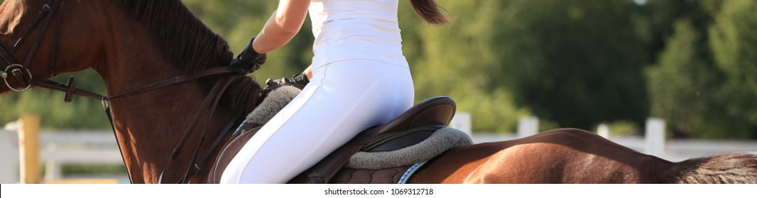 Horse, back closeup, banner. Showjumping, ride, horseback riding, equestrian sport concept. Rider girl on a sunny summer day at competition.