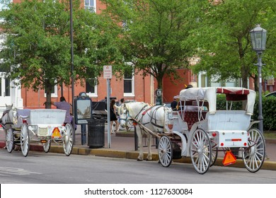 Horse and buggy rides on the Strand in Galveston Texas. The white horse carriage awaits the next passenger to give people a tour of the port city of Galveston.