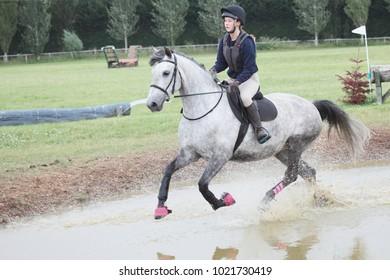 A horse cantering through water in a cross country course