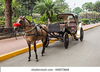 Horse with carriage in Intramuros, Manila, Philippines