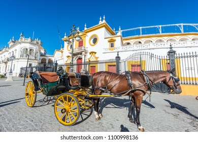 Horse carriage, one of the most classic ways to sightsee around the city of Seville in Andalusia, Spain