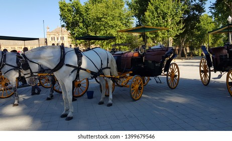 Horse carriages in the Plaza España in Seville ready for sightseeing
