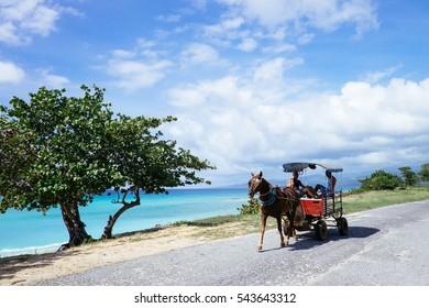 Horse cart at beachfront