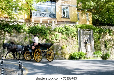 Horse Cart - Sintra - Portugal