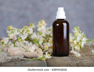 Horse chestnut anti-aging hair toner. Fresh chestnut flowers in the background.
