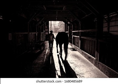 Horse and Cowgirl leave barn in morning light and shadow