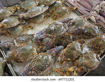 horse crab Seafood business