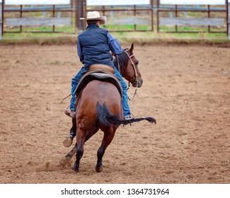 Horse cutting training demonstration in the rain - rain drops in photo