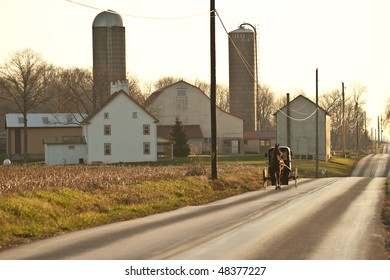 horse drawn amish cart being pulled down road