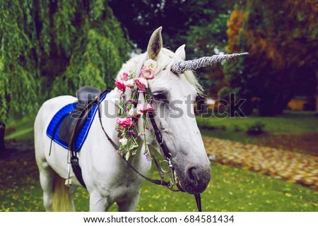 b907d6b28aa Horse dressed as a unicorn with the horn. Ideas for photoshoot. Wedding.  Party