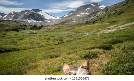 Horse ears perspective of a green alpine valley with mountain peaks and blue sky in the distance. (BC, Canada)