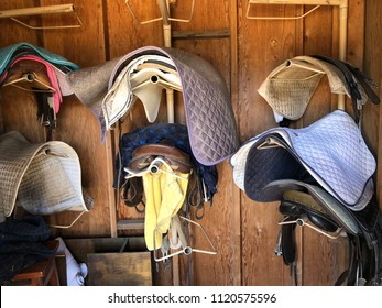 Horse Equipment at a stable (saddles, saddle pads, Leather Halters)