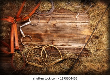Horse equipments on wooden background and empty space for text