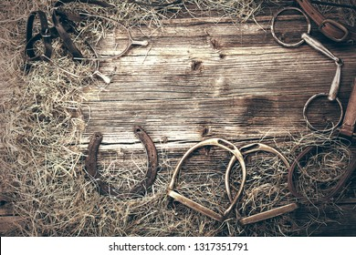 Horse equipments on wooden background with empty space for text, close up vintage view