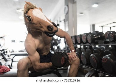 Horse Face man training lifting weights in gym with dumbbells