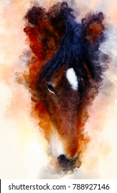 horse face and softly blurred watercolor background.