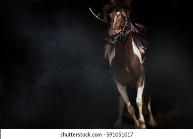 Horse fantasy beautiful white and brown action concept power still life, cloud isolated black on background