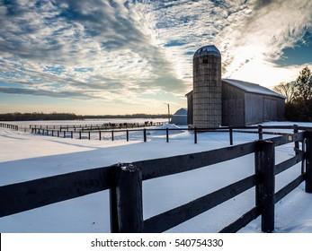 Horse Farm Field Winter Sun Down