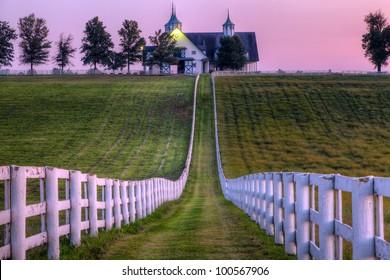 Horse farm at sunset