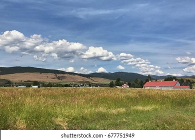 Horse farms outside Missoula, Montana