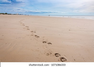 Horse footprint along the beach with blue sky background.