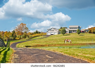 A horse grazing near a pond at a horse farm in the hills of Kentucky USA in autumn.