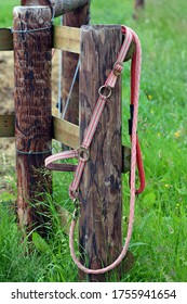 Horse halters on a fence outdoors